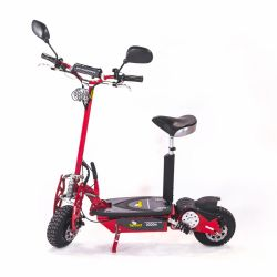 Scooter Elétrico 1000W 36V - Two Dogs